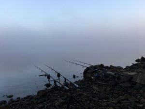 Frühmorgentlicher Nebel kündigte die kalte Jahreszeit langsam an.